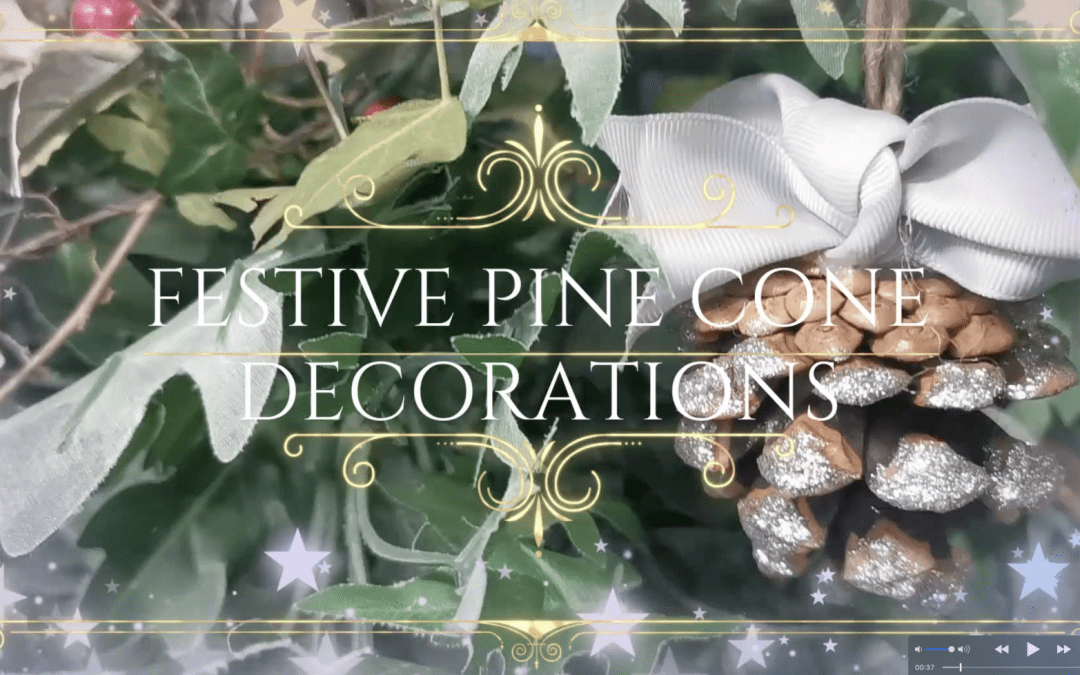Merry Munchmas – Make pine cone Christmas tree decorations with Kate.
